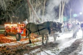 Horses and children in Christmas decorations ready for a horse-drawn wagon ride.