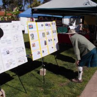 A fun peek at the Tartan Day San Diego festival.