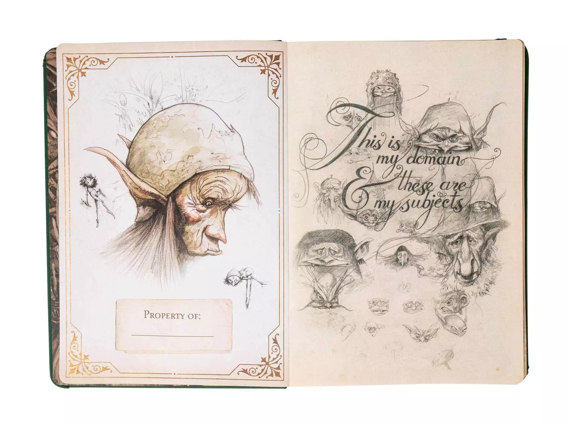 brian froud sketchbook int 2