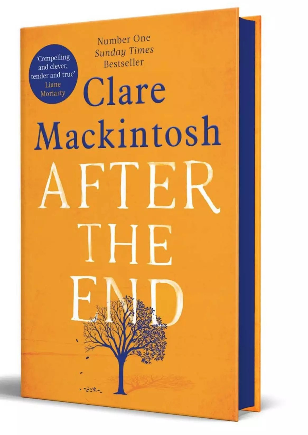 clare mackintosh after the end waterstones cover