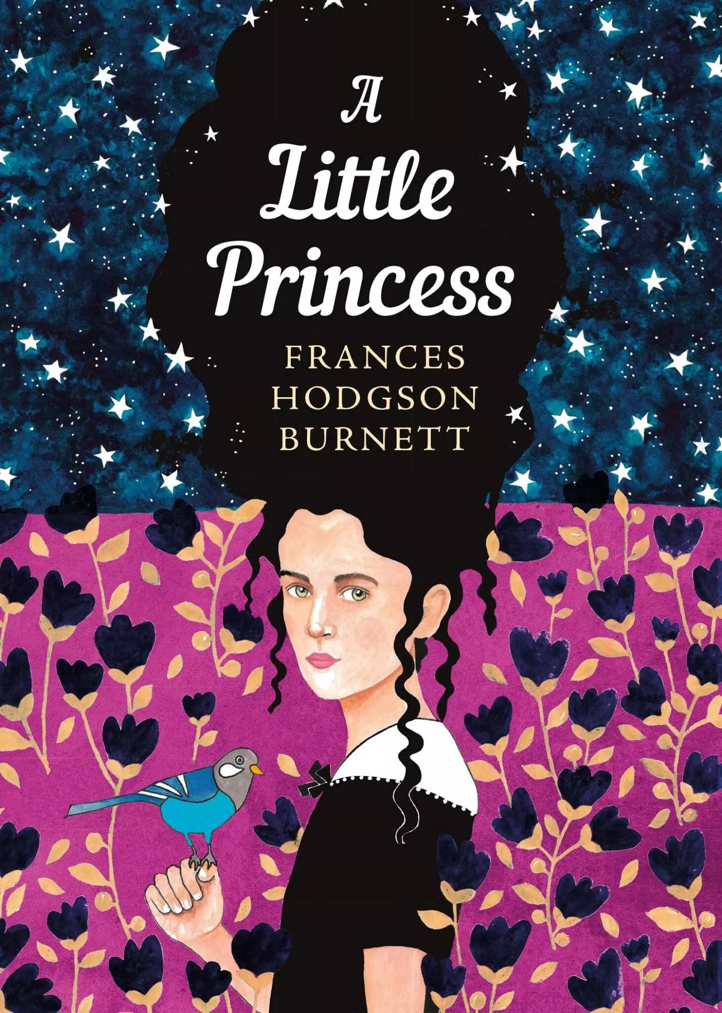 a little princess frances hodgson burnett sisterhood collection