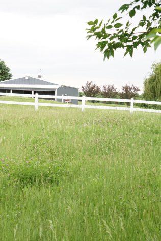 modern farmhouse minnesota