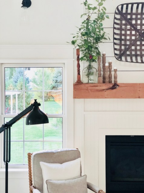 How to decorate with plants in your home