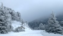 A snowy day on Mount Olympus, the highest peak of Cyprus - by Anika Mikkelson - Miss Maps - www.MissMaps.com