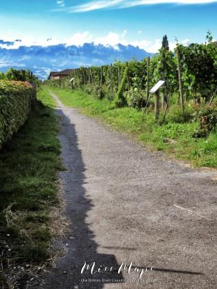 This is Liechtenstein - The Road to Liechtenstein - by Anika Mikkelson - Miss Maps - www.MissMaps.com