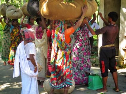 Women Collecting Tea - Sylhet Bangladesh - by Anika Mikkelson - Miss Maps - www.MissMaps.com