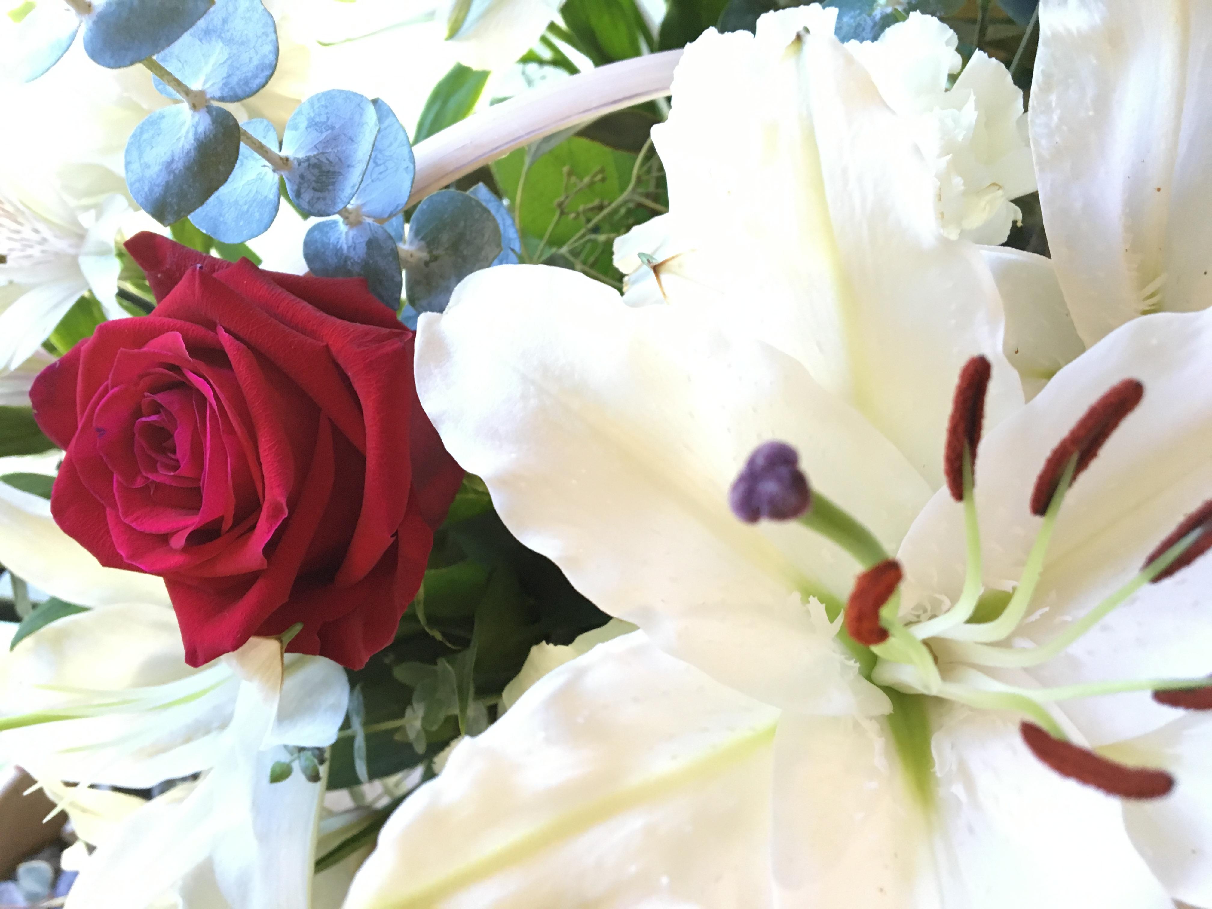 Grieving in Gratitude