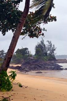 Gunung Gading beach