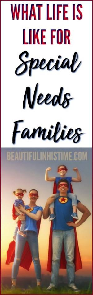 The Profile of the Special Needs Family: What life is {really} like for families with special needs. What they have in common.