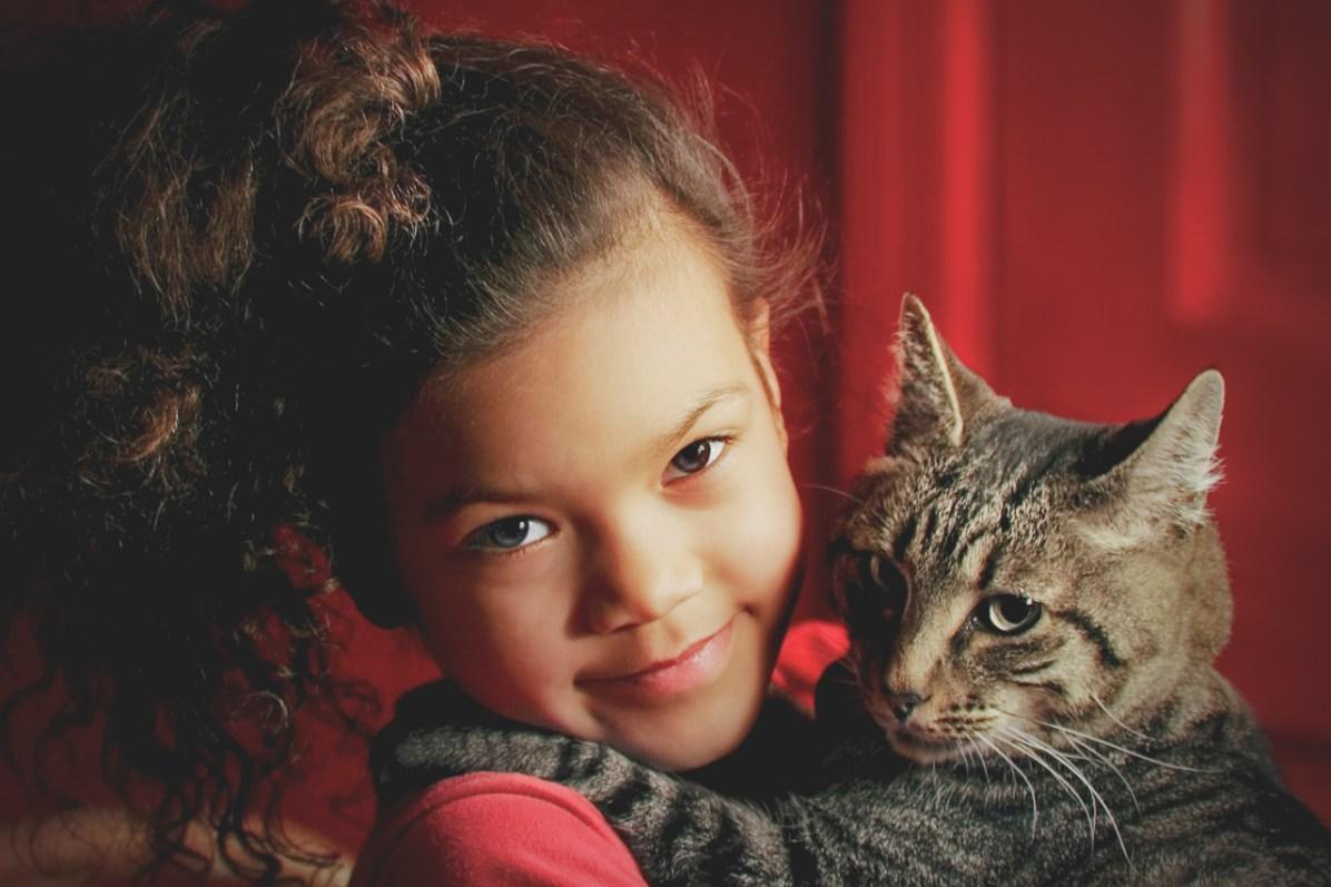 beautiful-life-gallery-cats-102