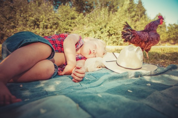 Little boy taking a nap with the chickens nearby