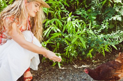 Pretty girl feeding a little red hen