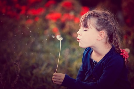 Girl blowing seeds from a dandelion