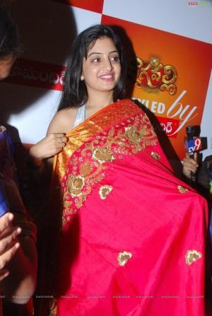 0014-poonam-kaur-high-resolution-nagavalli-collections14