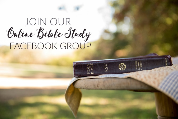 join our online bible study group