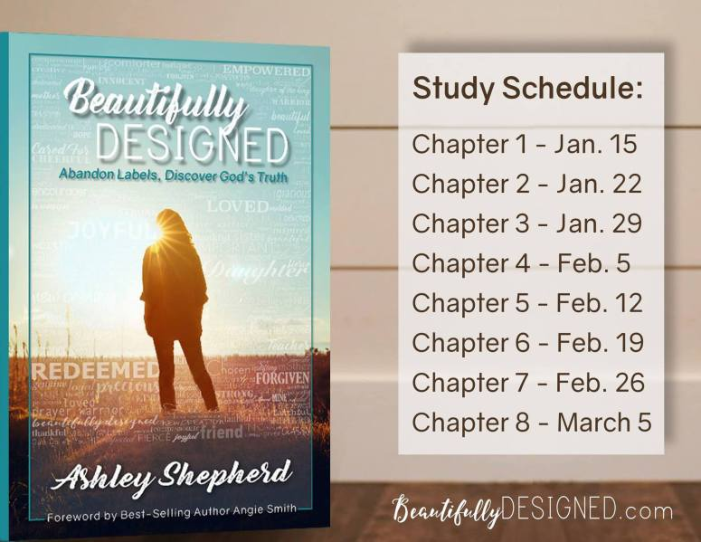 Beautifully Designed study schedule