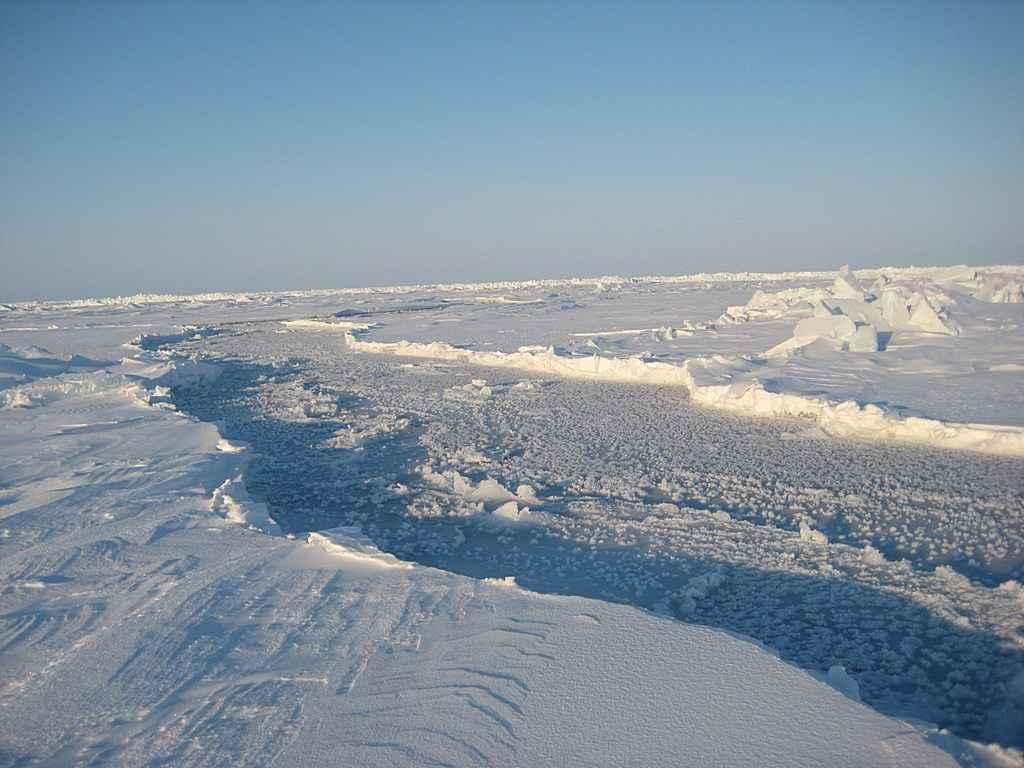 Perbedaan Kutub Utara Dan Kutub Selatan Bumi R3fin3