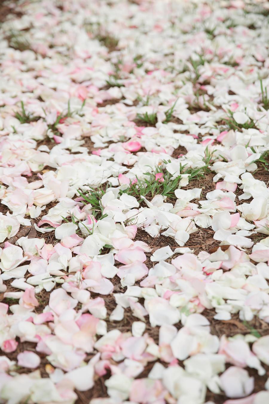 Rose Petal Aisle | Wedding Ceremony Ideas | Tampa Bay Wedding Floral Designer Northside Florist