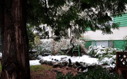 Screen Shot 2014-02-26 at 8.03.01 AM