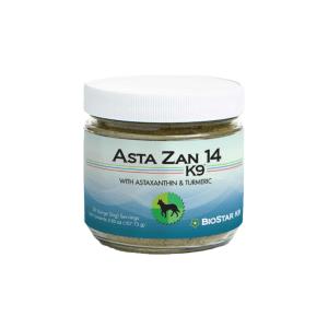 Asta Zan 1