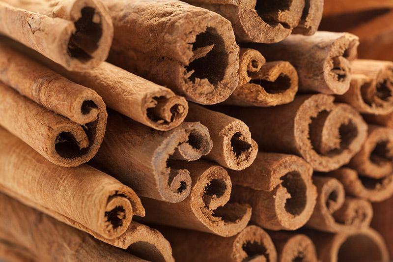 Cinnamomum Cassia Bark Extract