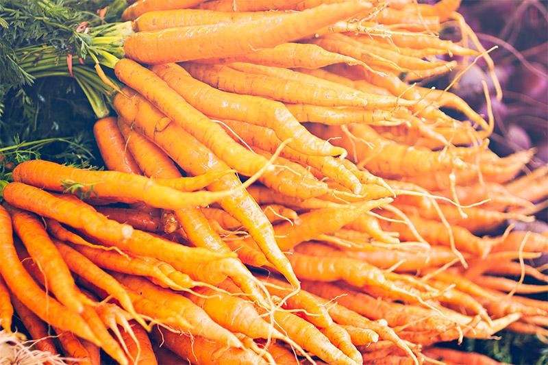 Daucus Carota Sativa Root Extract (Carrot)