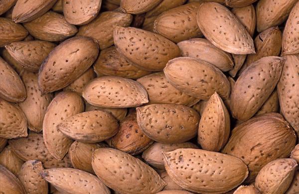 Prunus Amygdalus Dulcis (Sweet Almond) Oil