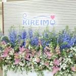 KIREIMO004.JPG