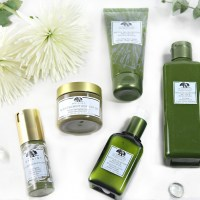 Origins™ Skin Care Picks!