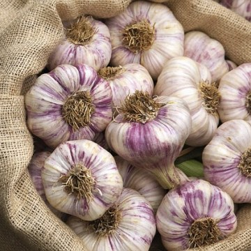 ELIMINATE THAT LINGERING SMELL OF GARLIC