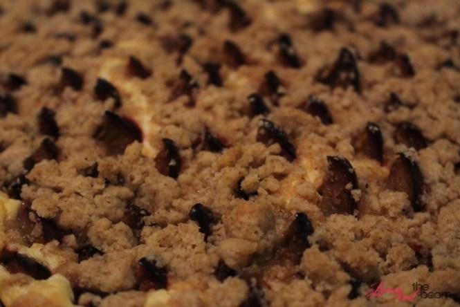 Zwetschgenkuchen (5)