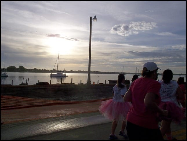 St. Augustine Pink Up The Pace 2012