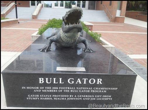 Florida Gators The Swamp