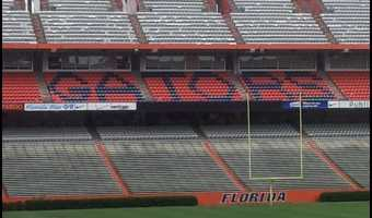 Hanging Out at The Swamp
