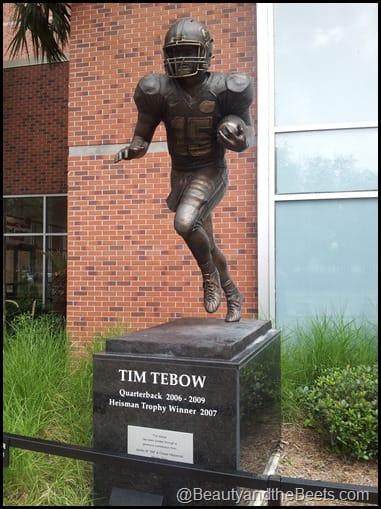 Tim Tebow Florida Gators The Swamp