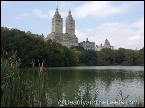 Central Park (2)