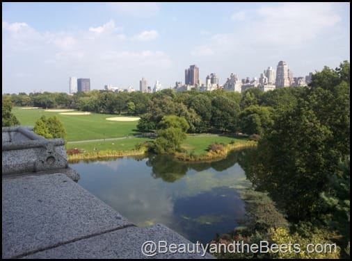 The view from Belvedere Castle Central Park