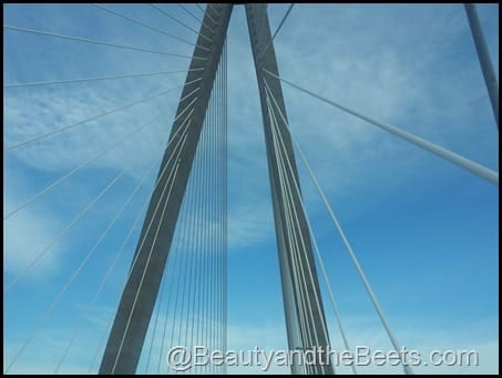 The Ravenel Bridge 1