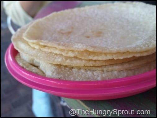 Corn Tortilla Rosa Mexicano Miami The Hungry Sprout