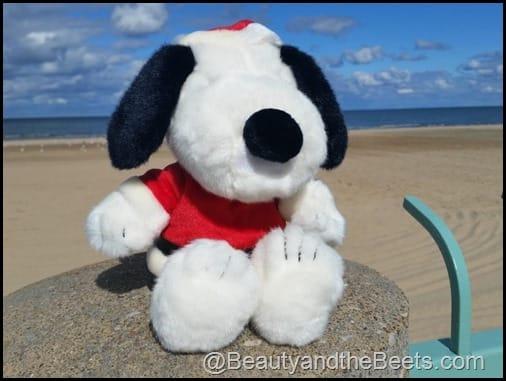 Snoopy on Lake Eerie