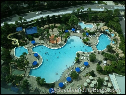 The pool at Hyatt Regency Orlando