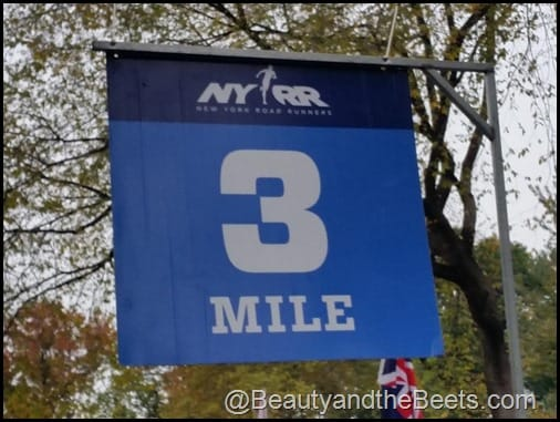 NYRR Dash to the Finish Line 3 mile