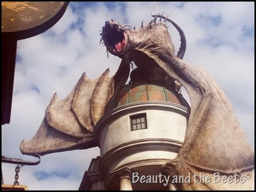 Dragon at Diagon Alley Universal Studios 3 Beauty and the Beets