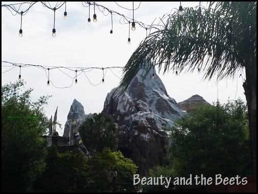 Expedition Everest Beauty and the Beets
