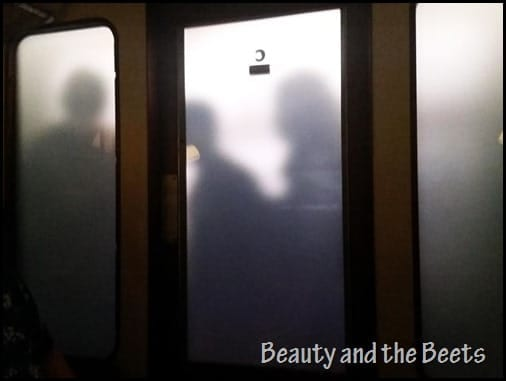 Universal Studios Hogwarts Express Beauty and the Beets 7
