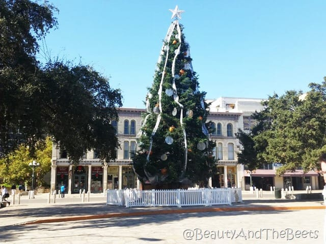 Alamo Plaza San Antonio Beauty and the Beets
