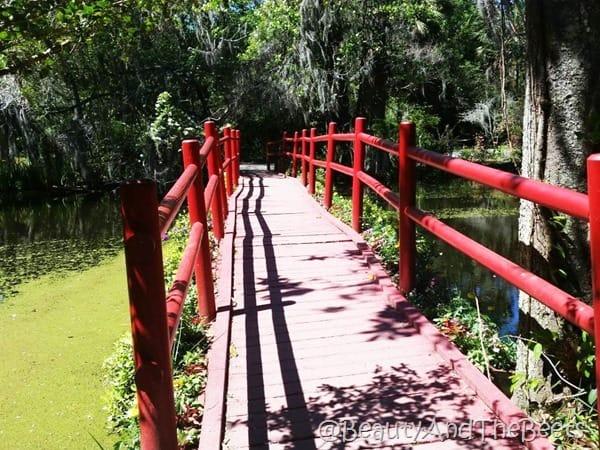 Japanese bridge Magnolia Plantation Beauty and the Beets