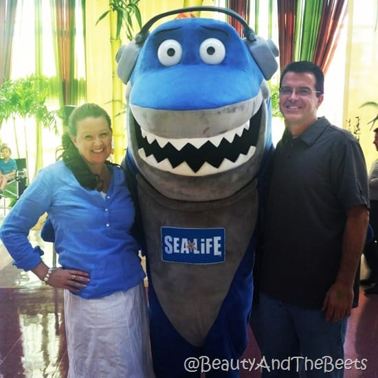Sea Life Orlando Beauty and the Beets