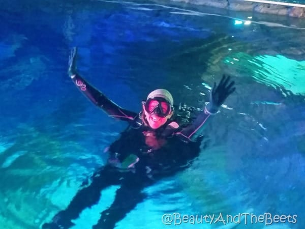 Sea Life Orlando divers Beauty and the Beets