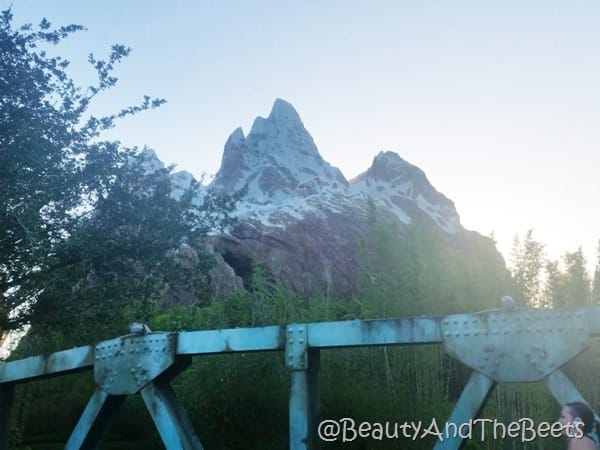 Star Wars Half Marathon Mt Everest Beauty and the Beets
